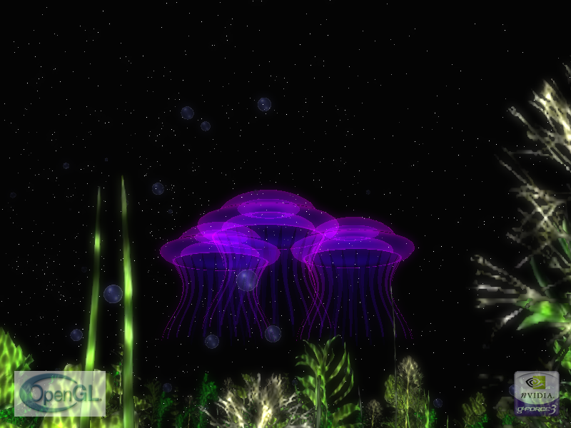 jellyfish_1.png